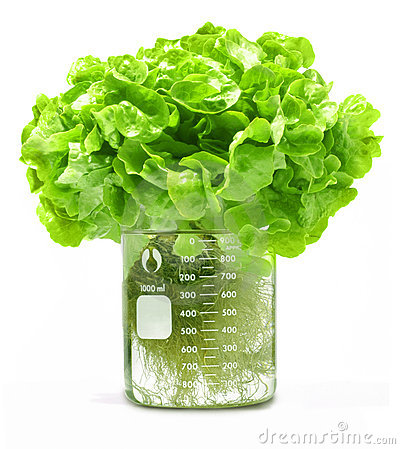 Hydroponic Stock Photos, Images, & Pictures.