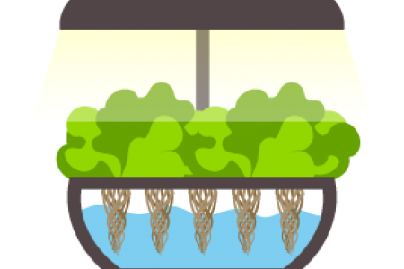Hydroponic Systems.