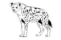 Hyena Silhouette Stock Illustrations.