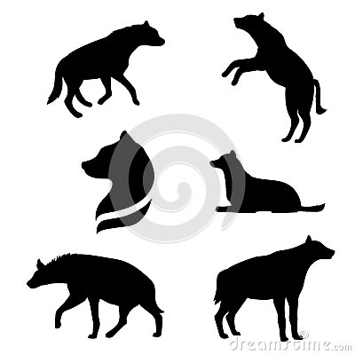 Vector Hyena And Silhouette Stock Image.