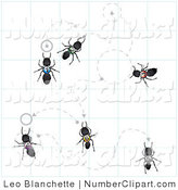Royalty Free Hymenoptera Stock Number Designs.