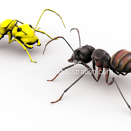 ClipArt Illustration Team of Ants Marching in Unity Toward a Goal.