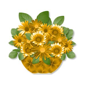 Hypericaceae clipart #5