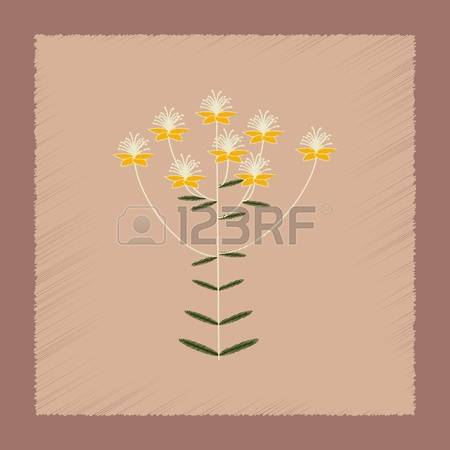 99 Hypericum Stock Vector Illustration And Royalty Free Hypericum.
