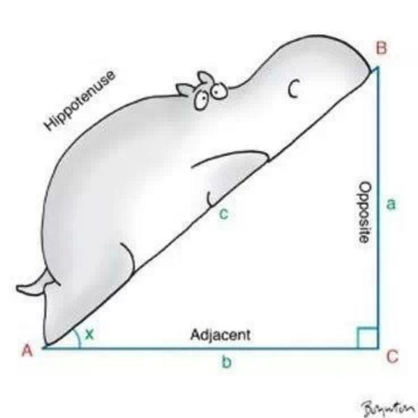 1000+ ideas about Pythagorean Theorem on Pinterest.