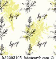 Hyssopus officinalis clipart #13