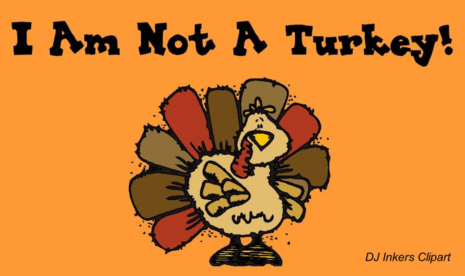 I Am Not A Turkey and Other Student Projects.