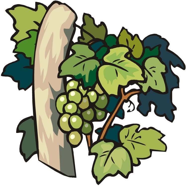 Vine And Branches Clipart.
