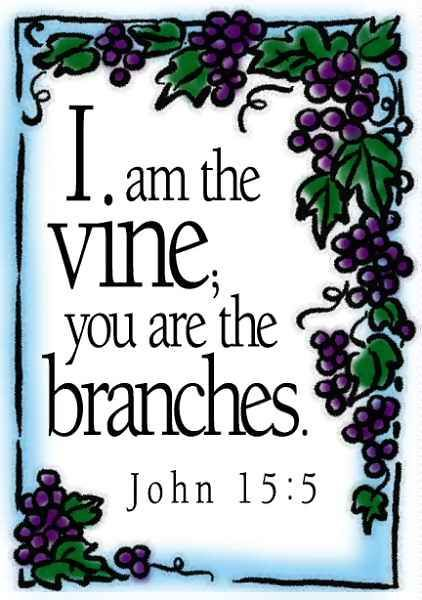 Am The Vine You Are The Branches John 15 5 Color.