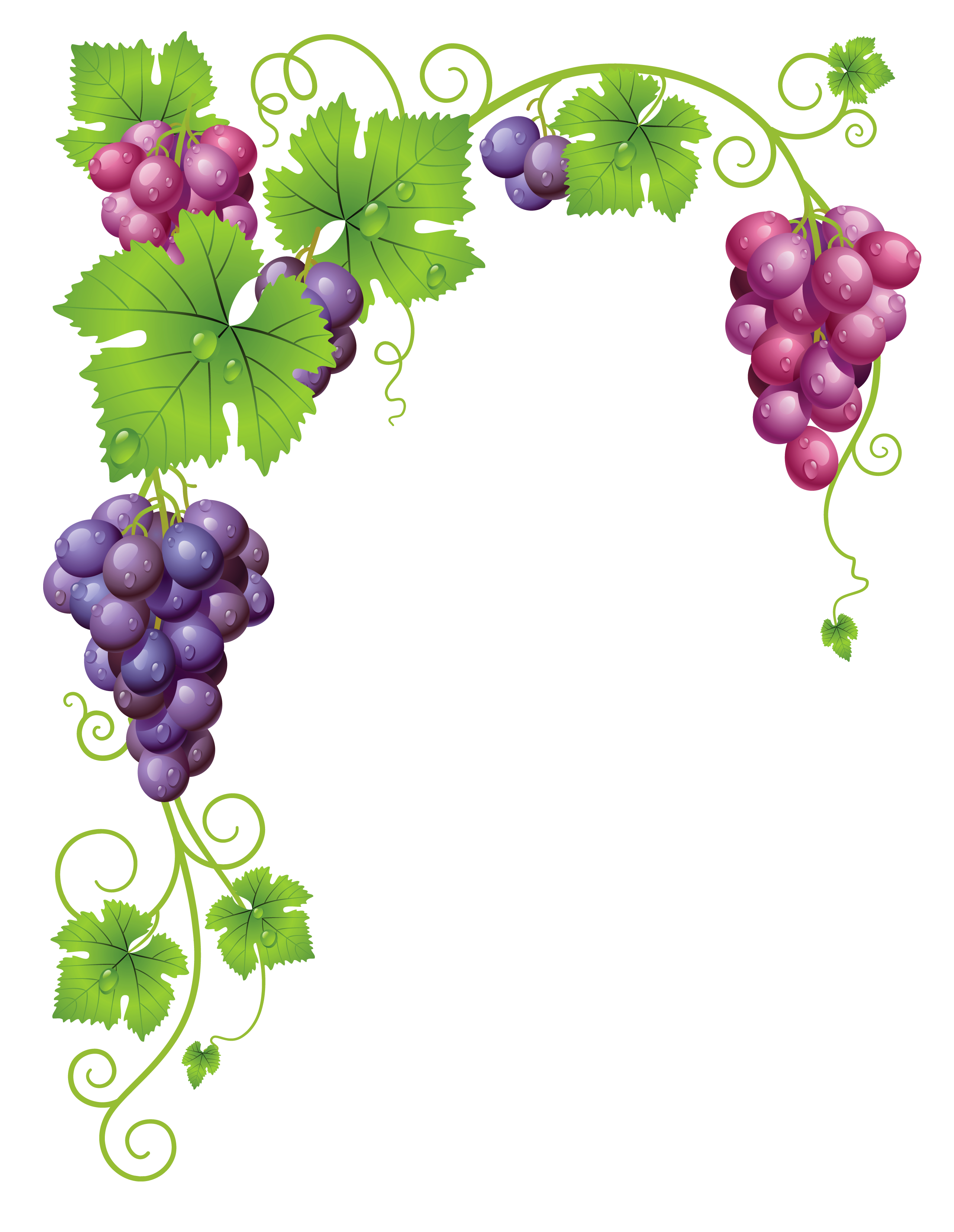 I heard it through the grapevine cp aption clipart clipart.