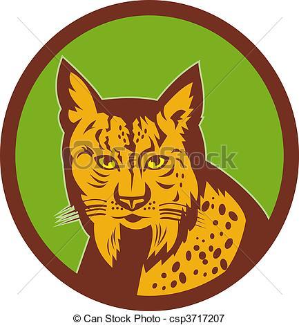 Iberian lynx Clipart and Stock Illustrations. 5 Iberian lynx.