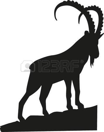 243 Alpine Ibex Stock Vector Illustration And Royalty Free Alpine.