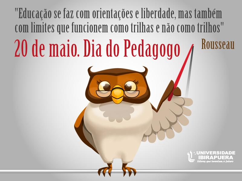 Universidade Ibirapuera.