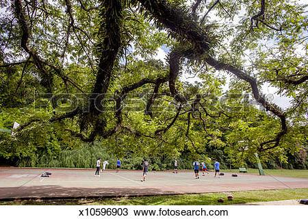 Stock Photo of A scene from Ibirapuera Park in Sao Paulo Brazil.