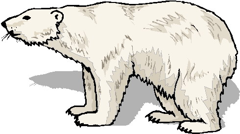 Free Polar Bear Clip Art Pictures.