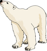 Polar Bear On Ice Clipart.