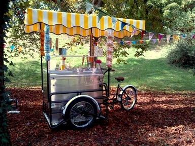 ICE CREAM CART ON BIKE TRICYCLE FOR YOUR ICE CREAM IN STREET.