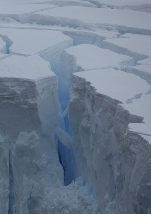 1000+ images about ice on Pinterest.