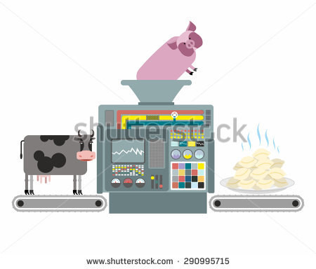 Production Of Pork And Beef Dumplings. Russian National Apparatus.