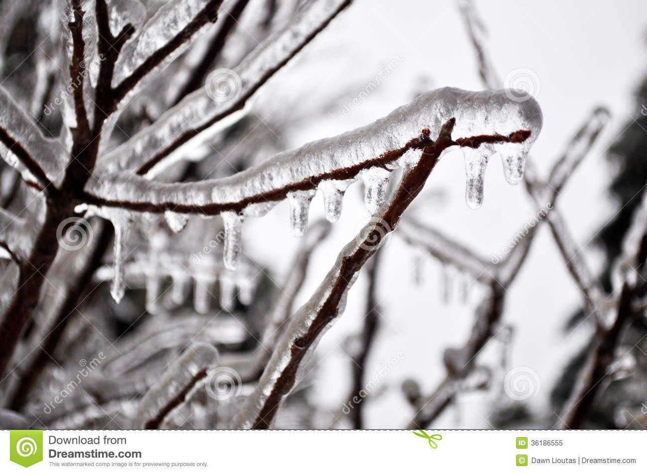 Ice Storm Royalty Free Stock Photo.