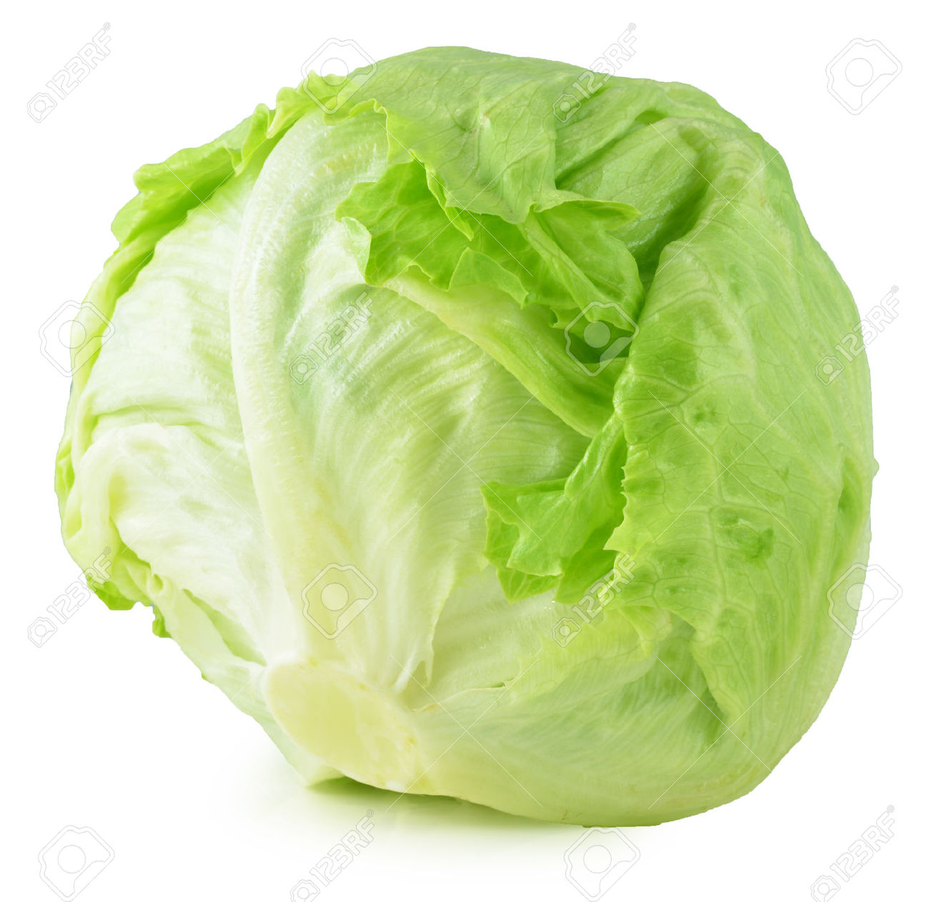 Iceberg Lettuce Stock Photos Images. Royalty Free Iceberg Lettuce.