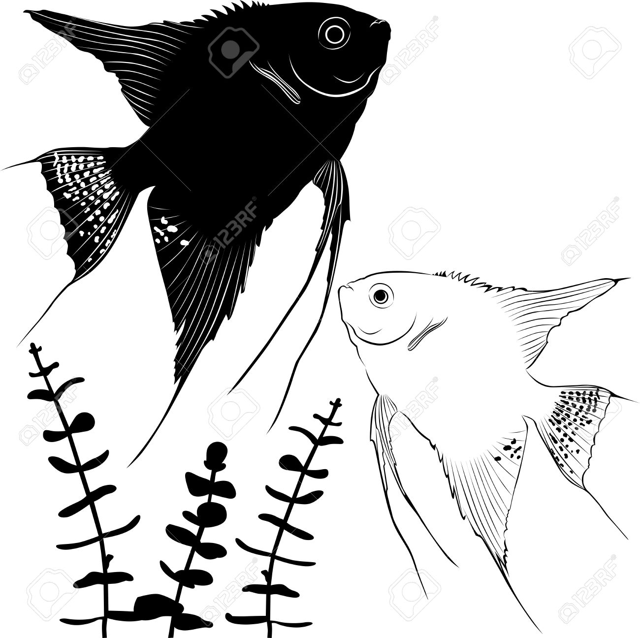 Angelfish Silhouette Ichthyology Illustration Royalty Free.