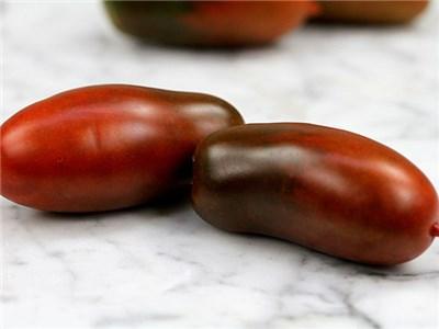 Robot Tomatoes 2016 seedling sale.