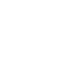 White skype icon.