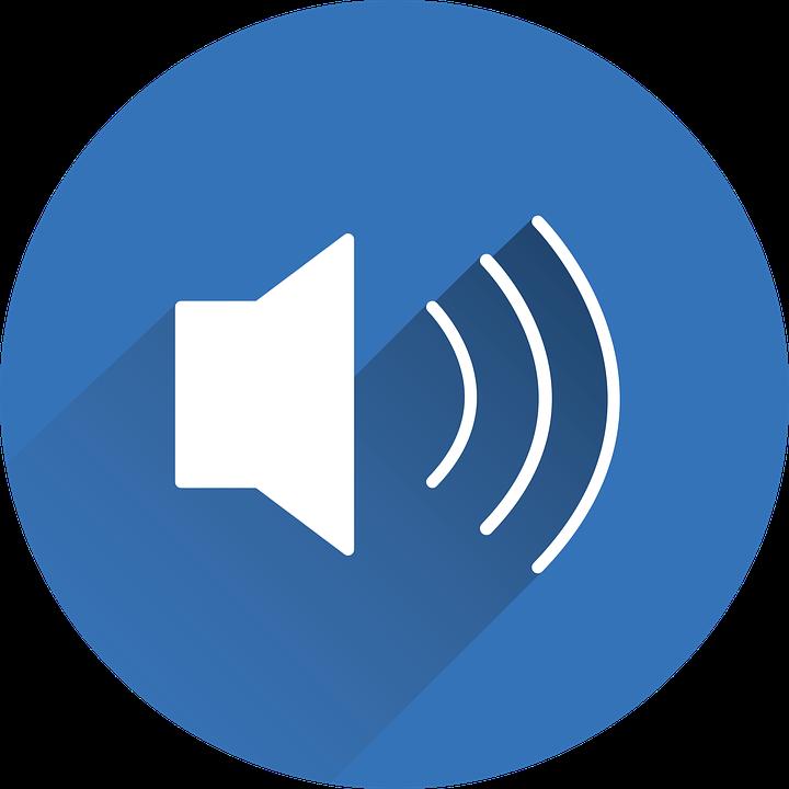 Speaker Sound Icon.