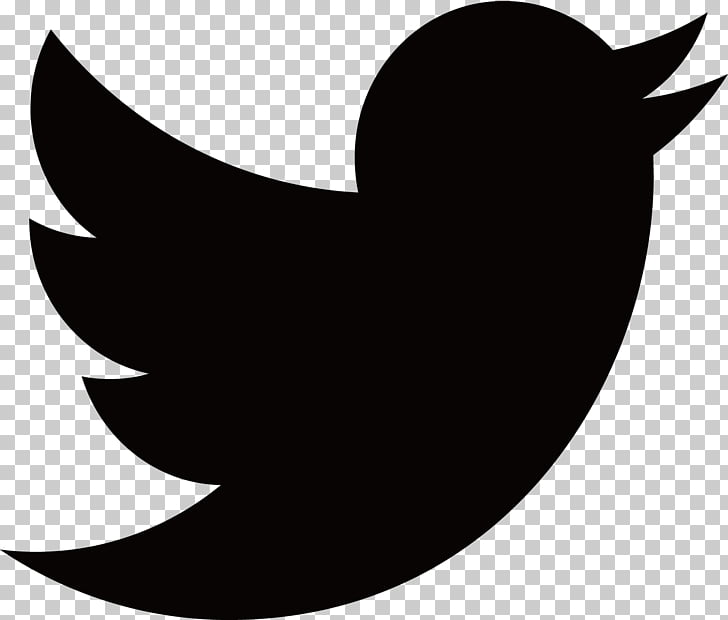 169 black Twitter PNG cliparts for free download.