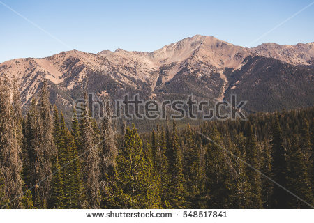 Sawtooth National Forest Stock Photos, Royalty.
