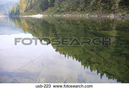 Stock Photo of Nez Perce Forest Reflected in Lake Idaho usb.