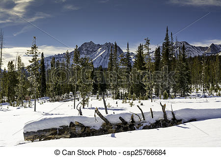 Pictures of Snow covered forest in Idaho with beautiful mountains.