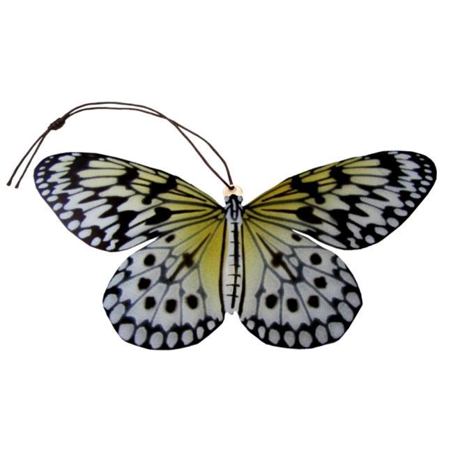 Paper Kite Butterfly Ornament (Idea leuconoe).