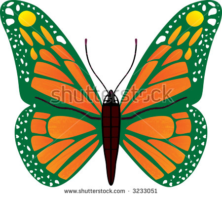 Decorative Butterfly Bright Colored Butterfly Simplified Stock.
