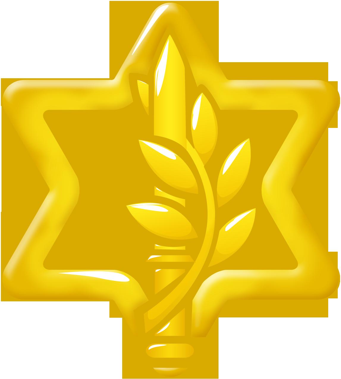 File:IDF New Logo.png.