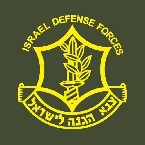 Israel Defense Forces (IDF) Classic T.