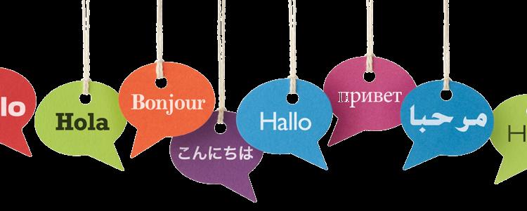 Idiomas: exigencias mínimas nivel básico y currículo básico niveles.