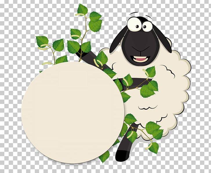 Sheep خروف العيد Eid Al.