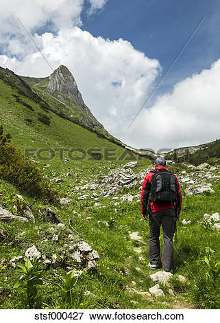 Picture of Austria, Tyrol, Allgaeu High Alps, Nature Reserve Hoher.