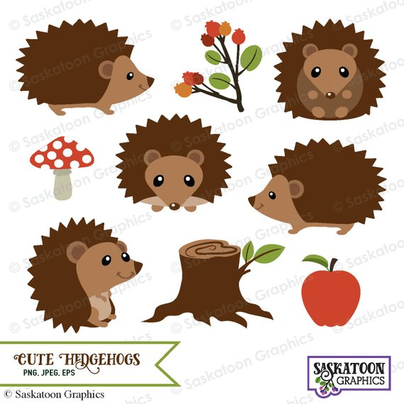Cute Woodland Hedgehog Clipart.