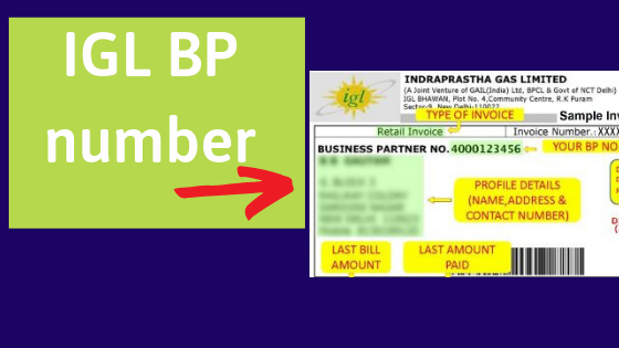 How to find IGL BP Number?.