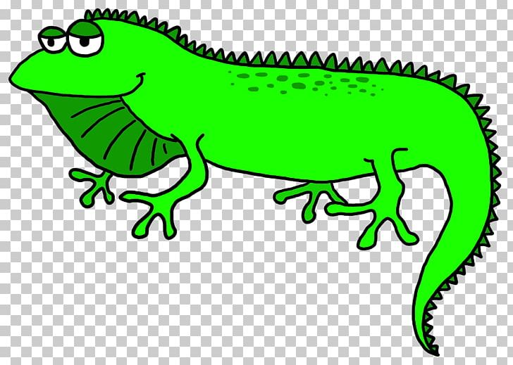 Lizard Green Iguana PNG, Clipart, Amphibian, Animal Figure, Area.
