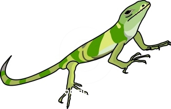 Iguana Clipart Cartoon.
