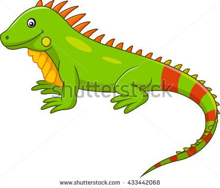 Iguana Stock Images, Royalty.