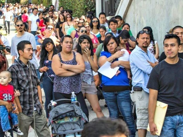 Report: Food Stamps Program Often Rigged to Benefit Illegal Aliens.