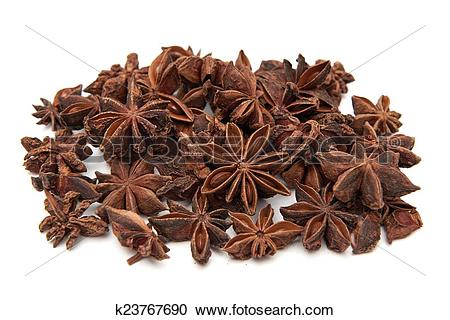 Stock Photography of Star anise (Illicium verum) k23767690.