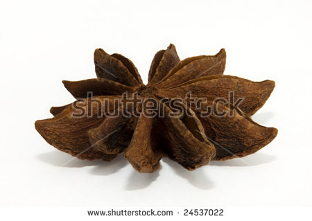 Single Seed Pod Of Star Anise (Illicium Verum) Photographed.