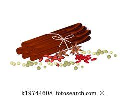 Illicium verum Clip Art Illustrations. 12 illicium verum clipart.
