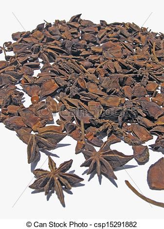 Pictures of Star Anise, Illicium verum Hooker fil., Illiciaceae.